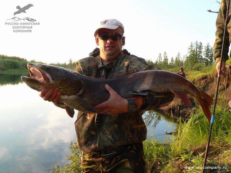 охота рыбалка туризм в красноярске